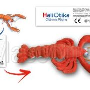 Custom Made Plush Toy norway lobster HALIOTIKA (custom made animal plush toy).